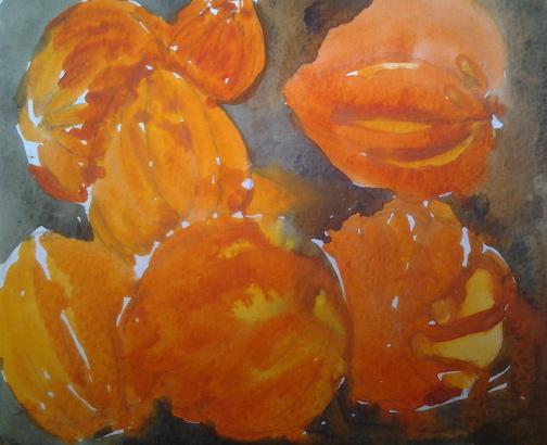 Acorn squash, watercolor, sketchbook, Fran Osborne, 2013