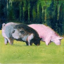 Fran Osborne, Free Range Pigs Grazing, animal husbandry, freedom, animals