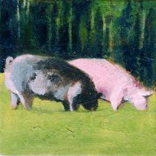 Fran Osborne, Free Range Pigs Grazing, animal husbandry, freedom, animals